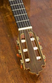 John Holland guitar teacher, Sydney Inner West, John Holland ,Strings and Wood, Guitars for sale